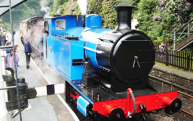 蒸汽小火車 Steam Train